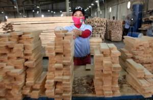 Xuất khẩu gỗ gặp khó vì tỉ giá