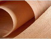 EU tăng 19% nhập khẩu gỗ dán cứng nhiệt đới